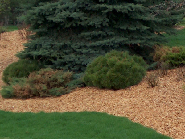 Holzhackschnitzel zur Bodenabdeckung